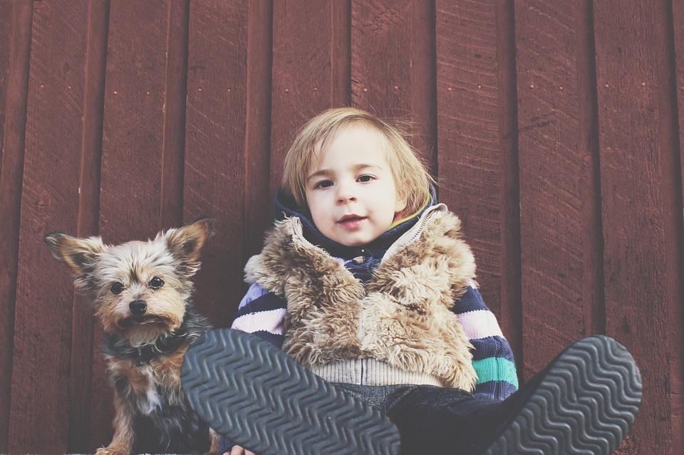 10 powodów, dlaczego warto mieć psa w domu