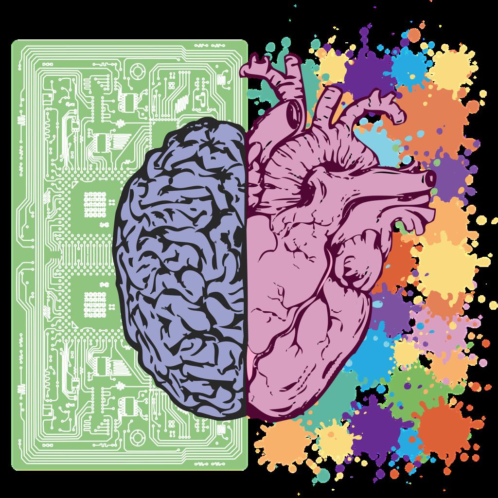 Ciąża prowadzi do długotrwałych zmian w ludzkim mózgu