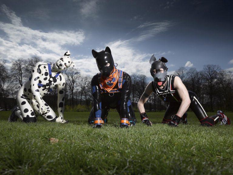 """Bohaterowie serialu """"Sekretne życie ludzkich szczeniaków"""" - trzy osoby w strojach psów na trawie /Ilustracja do tekstu: Człowiek-pies i jego sekretne życie"""